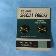 Special Forces Insignia Vietnam