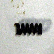 Mg42 Extractor Spring